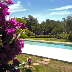 Luxury Villa Rental in Mallorca